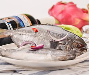 厄瓜多尔鲳鱼