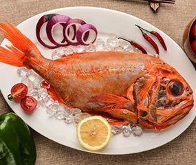 新西兰长寿鱼