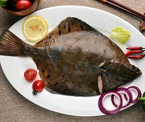荷兰欧鲽鱼
